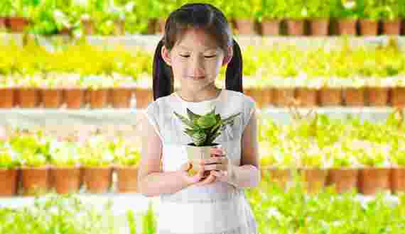 little girl holding flower pot
