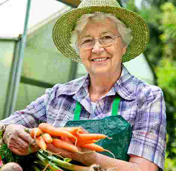 elder women holding carrots from garden