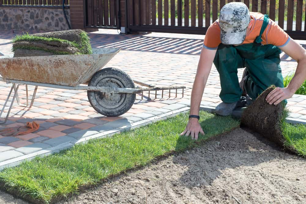 installing turf, benefits of working with the instant lawns team