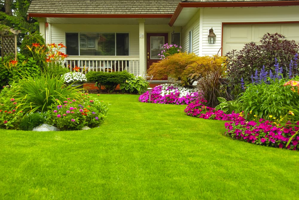 What are the Benefits of Landscaping