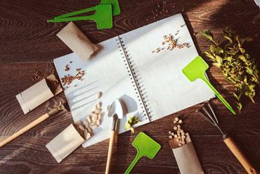 start-planning-your-spring-garden-now-370247